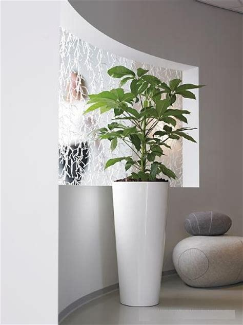 Big White Planters by Large Indoor Plant Pots Melbourne Indoor Planters Melbourne