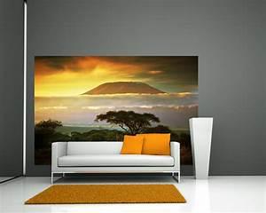 Fototapete Auf Raufaser : fototapete kilimandscharo mit savanne in kenya afrika tapeten landschaften ~ Markanthonyermac.com Haus und Dekorationen