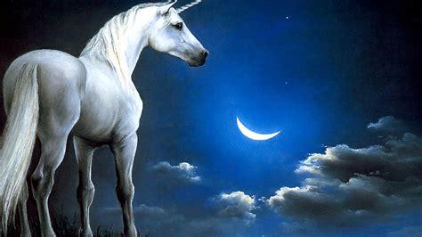 fondo pantalla unicornio