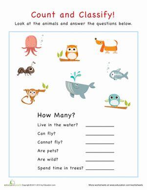 count  classify animals worksheet educationcom