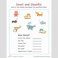 Count And Classify Animals  Worksheet Educationcom