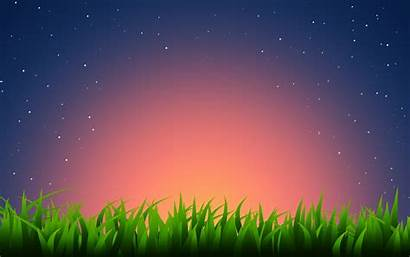 Simple Vector Grass Morning Wallpapers Plants Definition