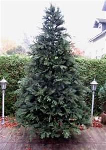 Weihnachtsbaum Kaufen Künstlich : best 28 weihnachtsbaum echt best 28 weihnachtsbaum echt k 252 nstlicher tannenbaum quot ~ Markanthonyermac.com Haus und Dekorationen