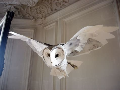 Pin by Charlett Lundblade on All Things Owls {:>} Closed
