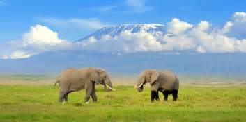images kitchen islands amboseli national park saa vacations