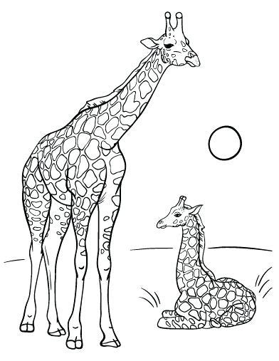 Coloring Jerapah by Giraffe Coloring Pages At Getcolorings Free
