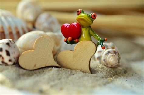 kostenlose foto strand holz sommer liebe