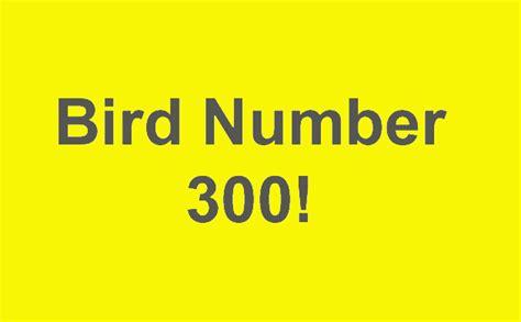 10 000 birds bird number 300 in queens and the winner of