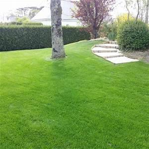 Gazon En Rouleau Truffaut : pelouse rustique ~ Melissatoandfro.com Idées de Décoration