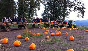 Pumpkin Patch Portland Texas by Hayride Photos With John Deere Tractors
