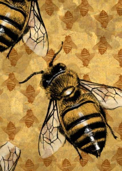 spirit totem animals bee pathfinder card  felixxkatt