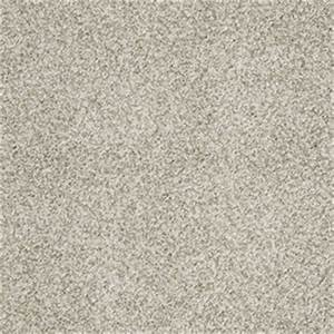 Shop stainmaster trusoft modern gray textured carpet at for Modern grey carpet texture