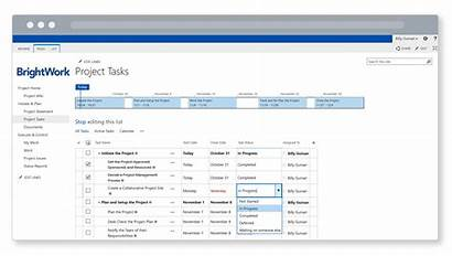 Sharepoint Template Project Management Site Lists Brightwork
