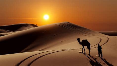 sunset  desert hd wallpaper wallpaperfx