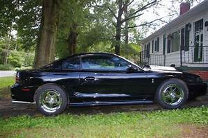 Sell used 95 Mustang Cobra 6 speed 347 stroker in Albemarle, North Carolina, United States