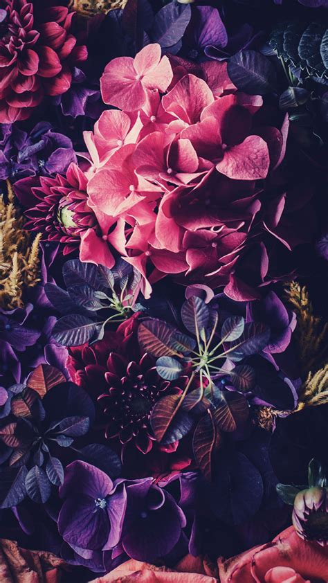 5 floral iphone wallpapers to celebrate 65k