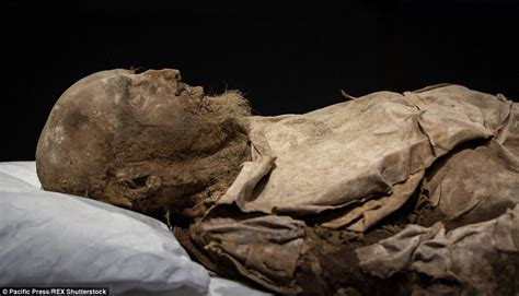 A rare glimpse of Sweden's mummified Bishop of Lund: Body