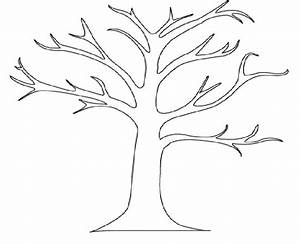 Outline Of A Tree - AZ Coloring Pages