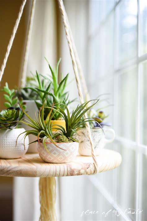 diy floating shelf  display  plants   decor items
