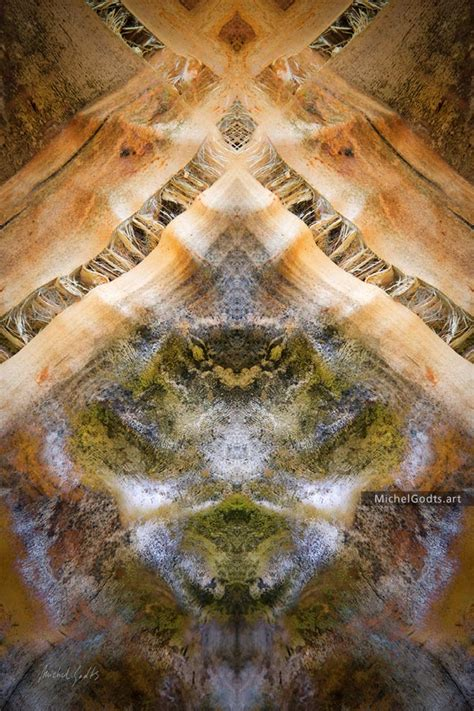 mystique gardens the mystique gardens experimental abstract photography print for sale michel godts