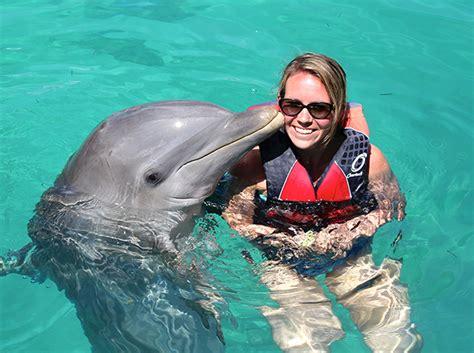 Dolphin Dream Boat Bahamas by Dolphin Encounters In Pensacola Florida
