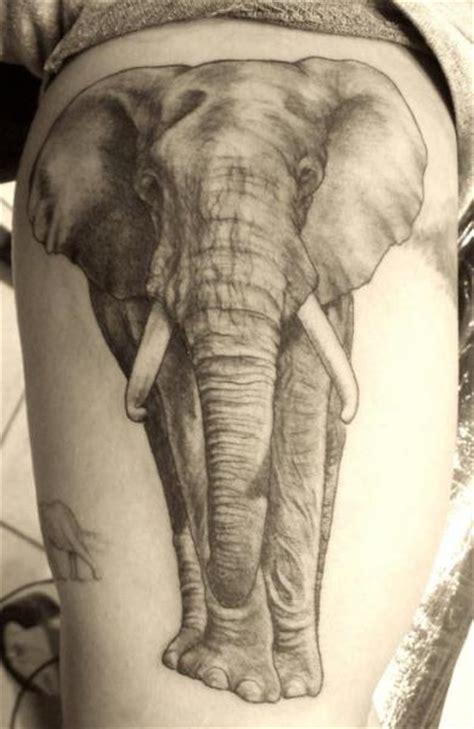 arm realistic elephant tattoo  border  tattoos