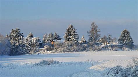 guten morgen im schnee foto bild world landschaften