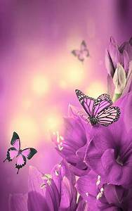 Download Butterfly Live Wallpaper Google Play softwares ...