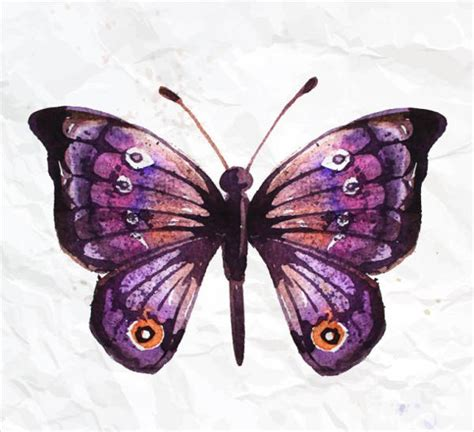 9+ Butterfly Illustrations - Free & Premium Templates ...