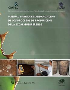 Manual Para La Estandarizacion De Procesos De Producci U00f3n