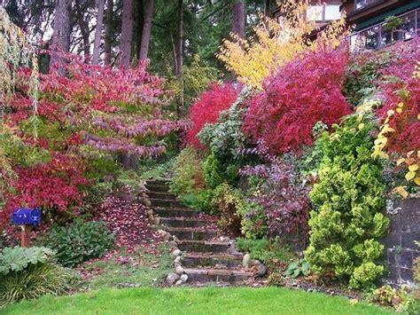 the lakeside garden in fall foto di cottage lake gardens