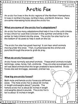 Arctic Fox Informational Text: Main Idea, Comprehension