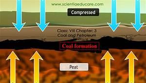 Class  Viii Chapter  3 Coal And Petroleum