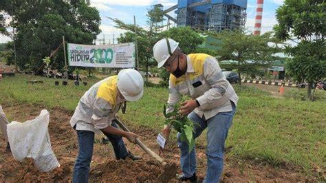 pt msw tanam pohon peringati hari lingkungan hidup sedunia