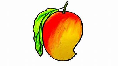 Mango Drawing Draw Step Drawings Simple Colour