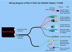Ezecu R  Standalone  U0026 Piggyback Ecus And Ems  Engine