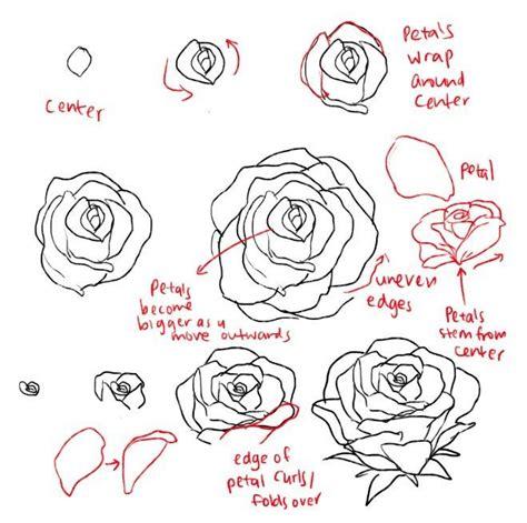 draw  rose tutorials rose flowers easy drawings