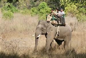 Sanjay Gandhi National Park, Sanjay Gandhi Wildlife ...