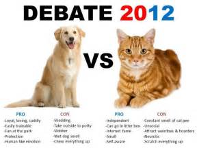 why are dogs better than cats why dogs are better cat critique