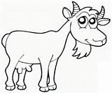 Goat Coloring Goats Drawing Preschool Crafts Preschoolcrafts sketch template