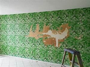 professional wallpaper removal cost 100 2237 1024×768 ...