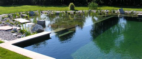 all about swimming pools ecohome