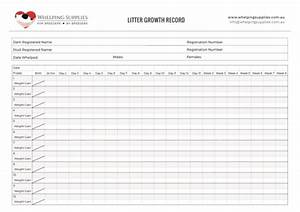 Litter Growth Record Whelping Supplies