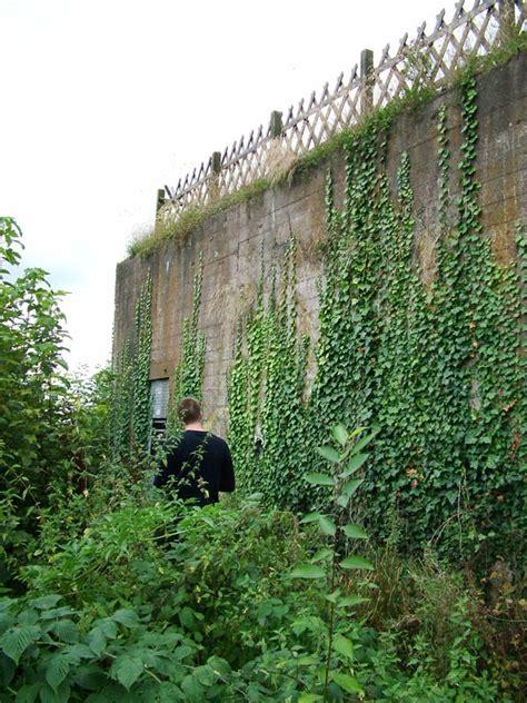 Bunker 371  Westwall  Hürtgenwald  Bergstein  Www