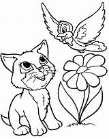 Coloring Pages Cats Cat Dogs Printable Colouring Kitten Animals Kitty sketch template