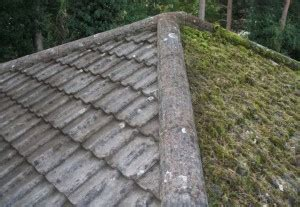 roof cleaning  pressure washing  great read