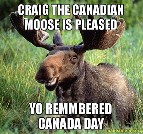 Canadian Moose Meme - craig the canadian moose is pleased yo remmbered canada day make a meme