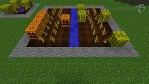 Growing Crops | Minecraft 101
