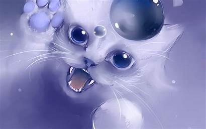 Cat Cool Cats Desktop