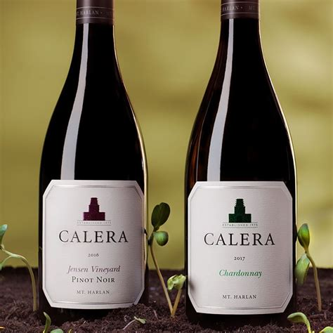 Travel guide resource for your visit to calera. Legendary California Pinot Noir | Calera Wine Company